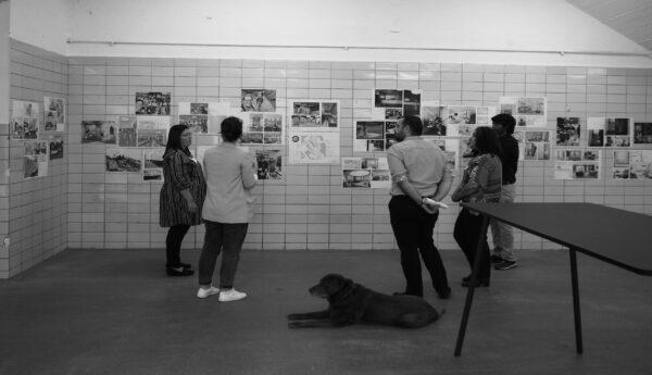 Workshop – Bavaria PS